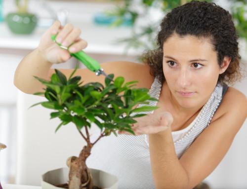 5 tips om perfectionisme de baas te blijven